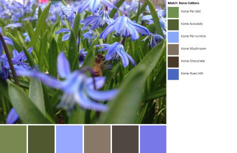 2014-04-11 11.51.37-1-palette (1)