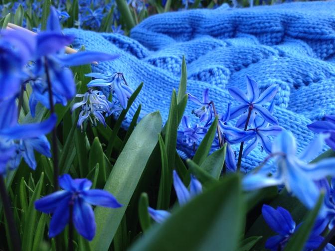 Beauteous, Bountiful, Botanical Blue!