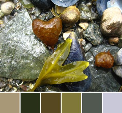 2775769736_b177f8e9cb_b-palette