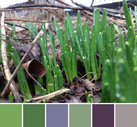 photo 2 (8)-palette
