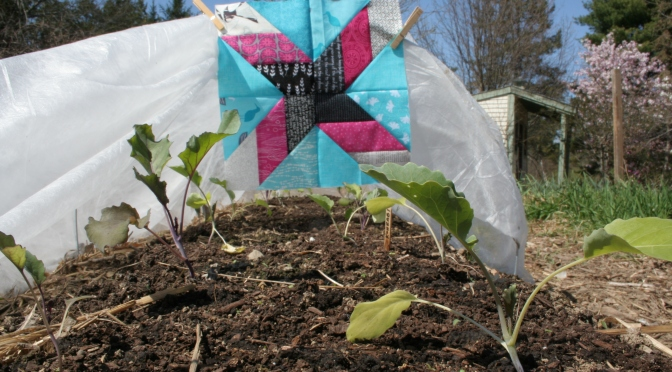Gardening by Day; Quilting by Night