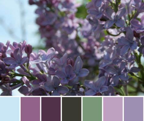 purple color palette lilacs