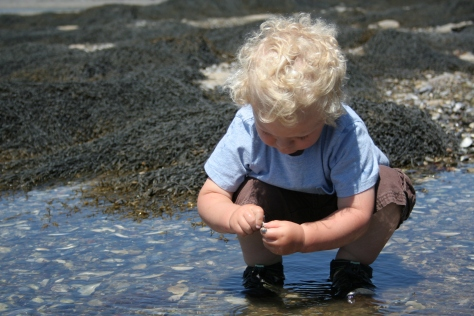 Playing in tide pools on Hutchins Island.