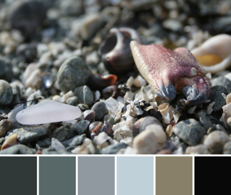 seaside treasures color palette