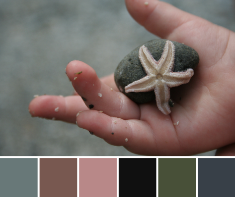 peach starfish and child color palette