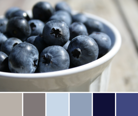 blueberries color palette