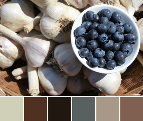 garlic and blueberries harvest color palette