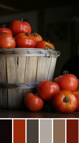 tomato color palette