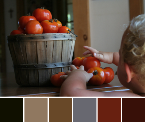 tomatoes and a helper color palette