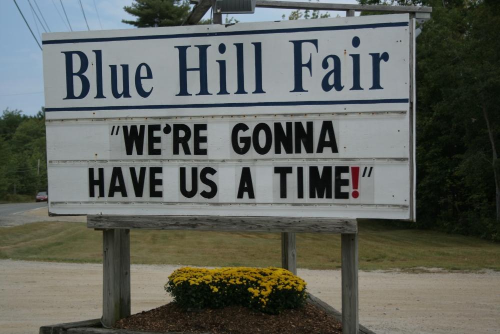 Blue Hill Fair Quilt Submission (1/6)