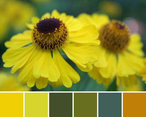yellow autumn color palette