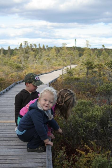 kids at the bog