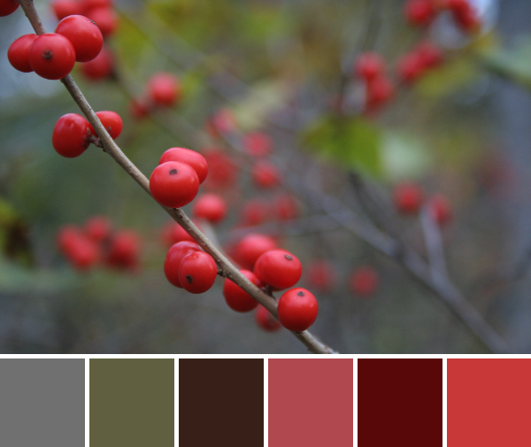red berries color palette