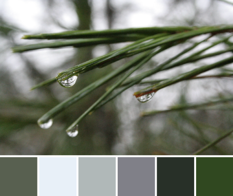 see the world in a drop of water color palette