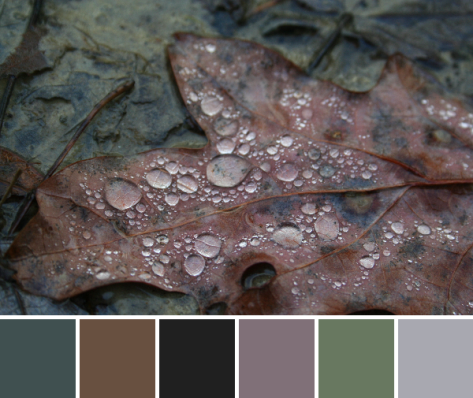 drip drop leaf brown color palette