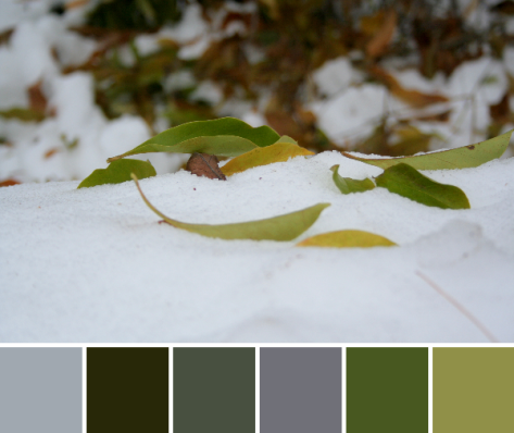 snowy fall color palette
