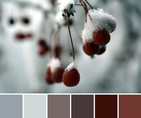 snowy red berries color palette