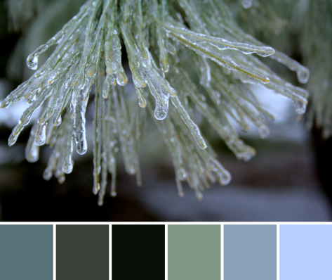 icy evergreen color palette