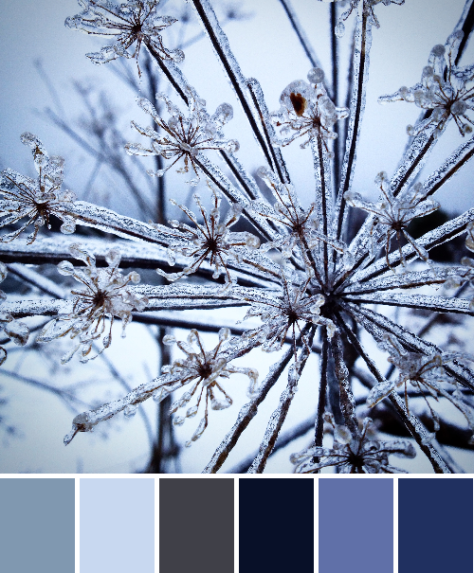 Instagram icy blues color palette