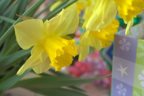 gorgeous spring baby shower gifts