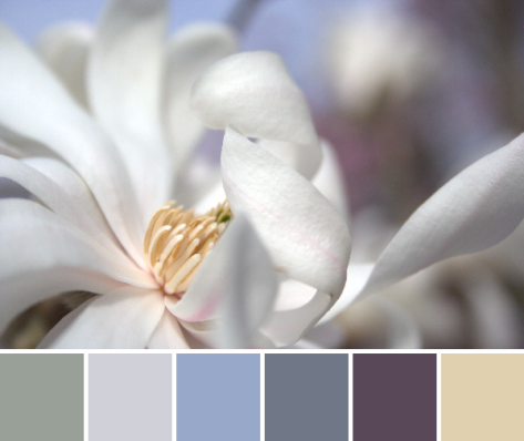 baby blues color inspiration color palette
