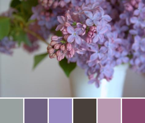 lilacs color palette