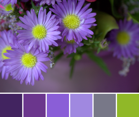 purple and lime flower color palette