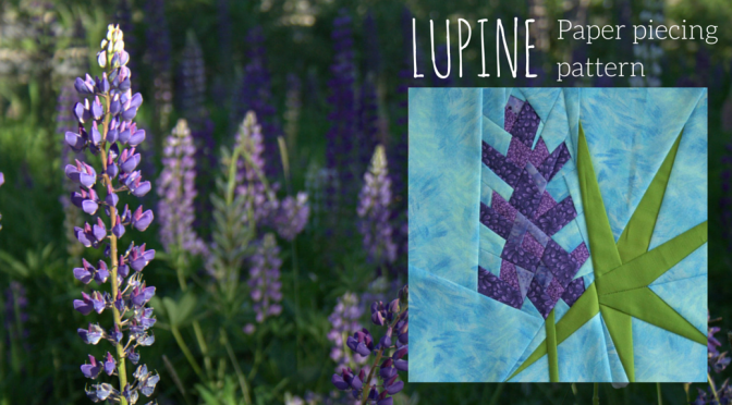 Lupine Season and a Summer Sale