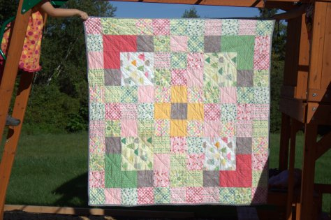 Rainy Days Picnic quilt first quilt