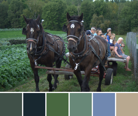 hay ride color palette north branch farm