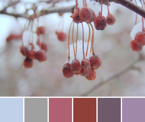 winter red color inspiration palette