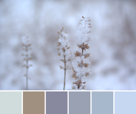 winter color inspiration palette