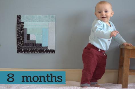 finn 8 months milestone quilt