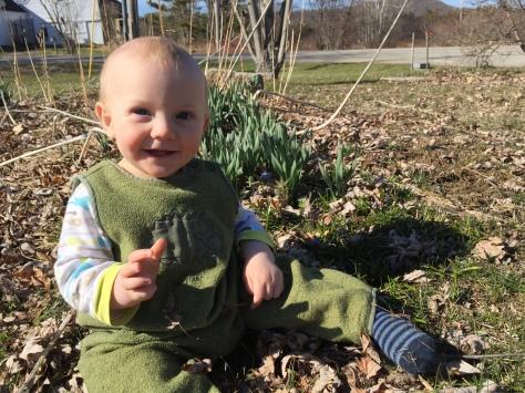 finn for scale spring flowers
