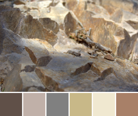 sand dune colors color palette