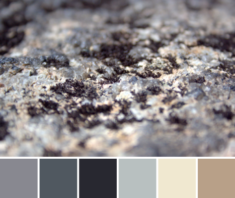 stone ground color palette
