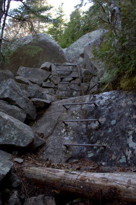 metal ladder trail