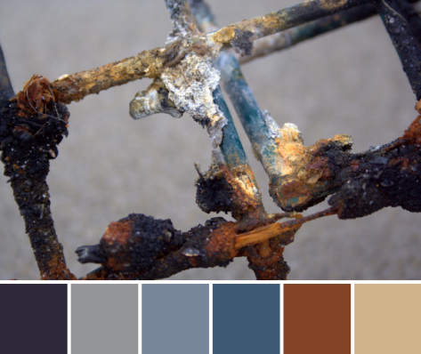 rusty lobster trap color palette
