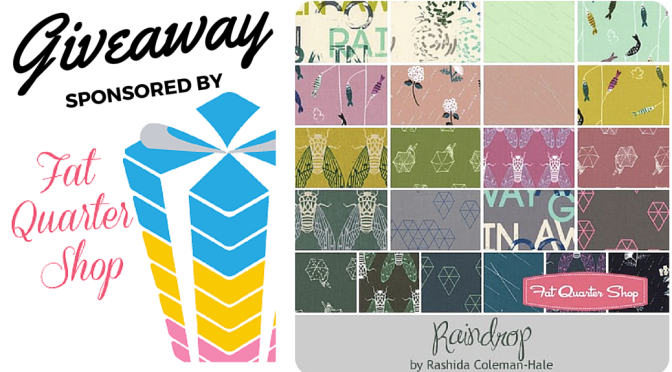 Friday Giveaway: Raindrop Bundle by Rashida Coleman-Hale