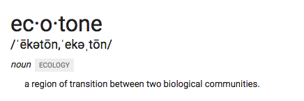 google definition of ecotone