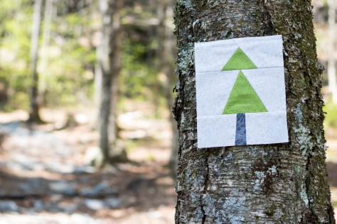 blue hill mountain summer adventure quilt