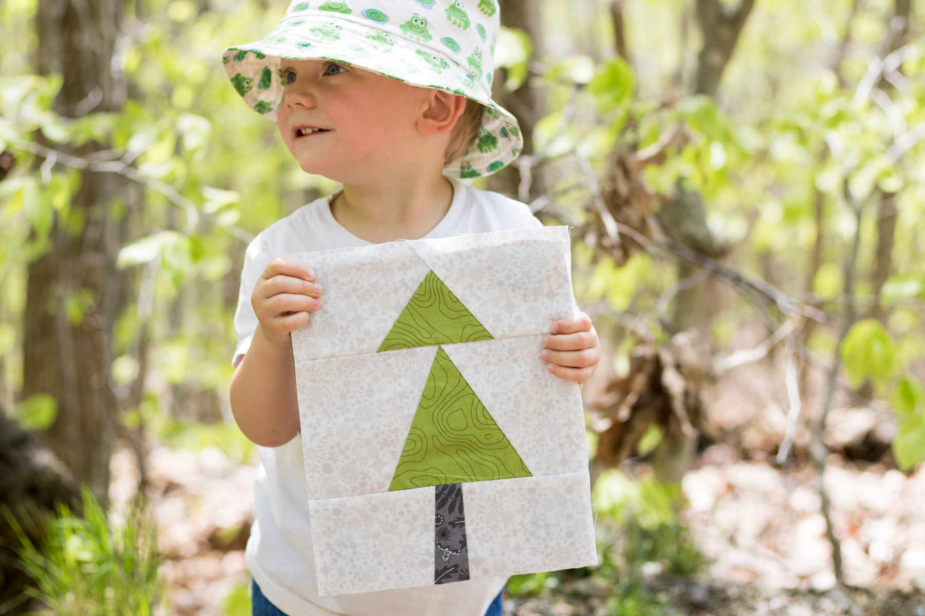 blue hill mountain summer adventure quilt